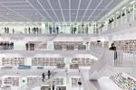 biblioteca-26